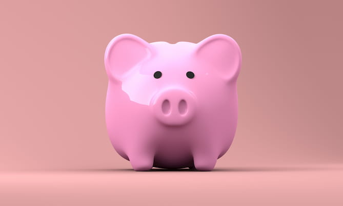 Image of a piggy bank, the type in which you can put the money that you save from utility rebates.