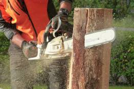 Photo of chainsaw.